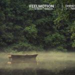 Feelmotion 2.0: опыт FIOFA